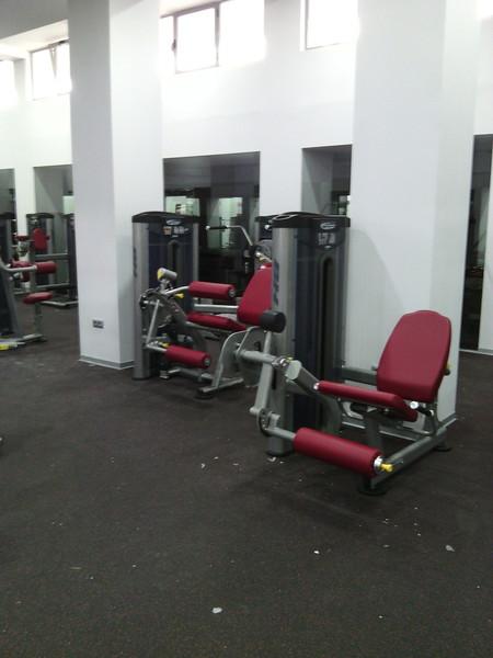distribuidor de equipamientos para gimnasio y maquinaria