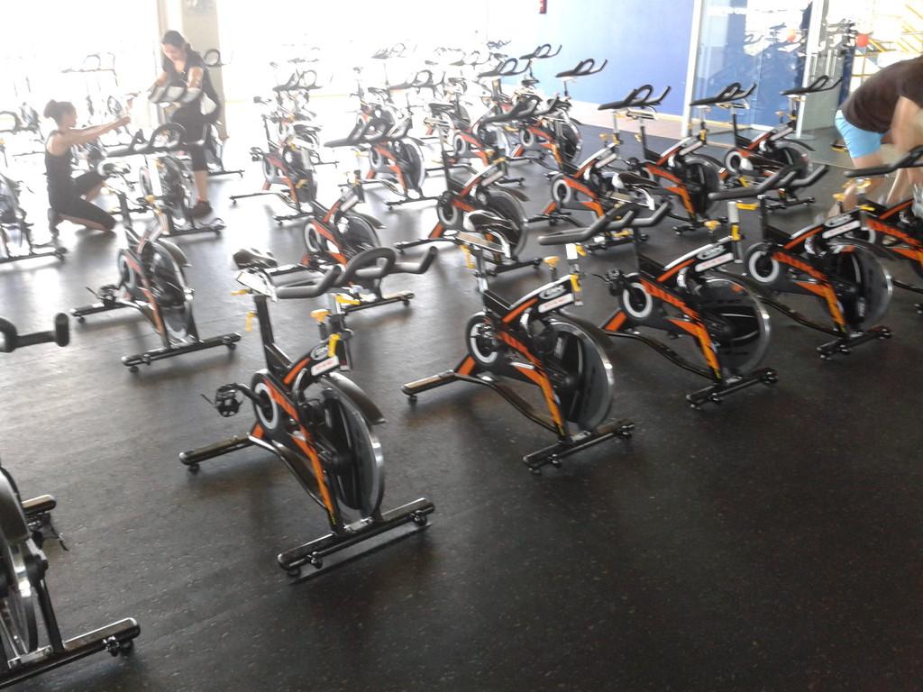 Distribuidor de equipamientos para gimnasio y maquinaria for Gimnasio triunfo